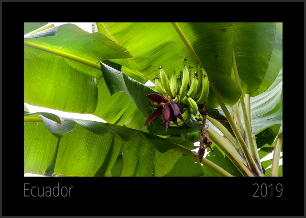 Kalender 2019 Ecuador - Titel